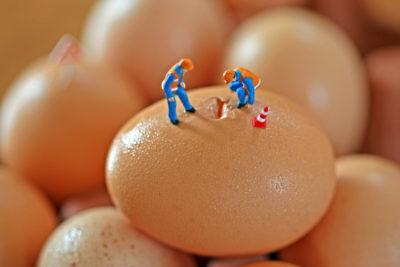 αντικατάσταση αβγού
